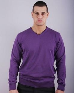 Мъжки пуловер шпиц модел 1314022V3100